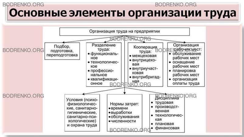 Деятельность в психологии