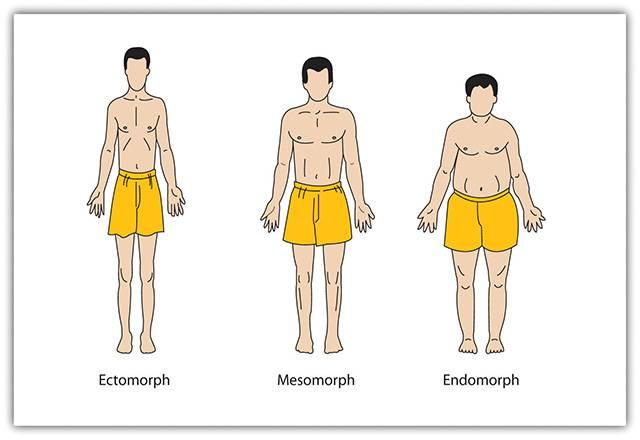 Athletic stretch (атлетик стрейч) - гибкость и сила: о новом направлении фитнеса