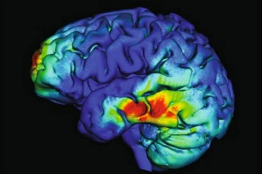 Виды памяти в психологии — загадки человеческой природы
