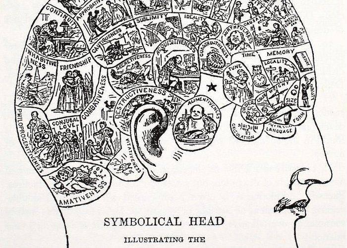 Вклад аристотеля в развитие психологии (стр. 1 из 3)