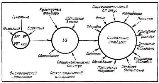 Тест на определение уровня iq равена