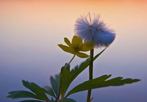 5 ошибок, которые мешают вам достичь цели. статья. поиск своего призвания. самопознание.ру