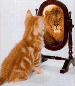 Психология: самоуважение - бесплатные статьи по психологии в доме солнца
