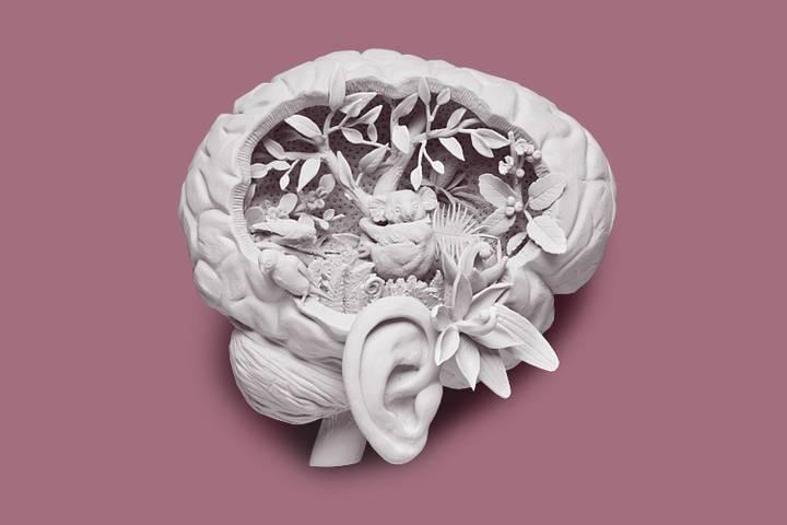 Причины возникновения и лечение гипнагогических галлюцинаций