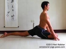 Биомеханика работы коленного сустава