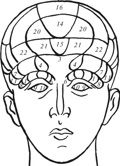 Мимика (выражение лица)