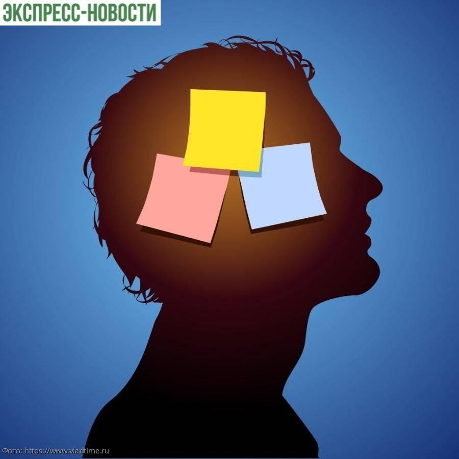 Эрудиция и память параноика - сайт помощи психологам и студентам