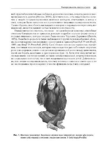 Психология: открытки с юмором - бесплатные статьи по психологии в доме солнца