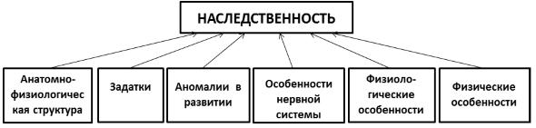 Как связаны социальный статус и социальная роль?