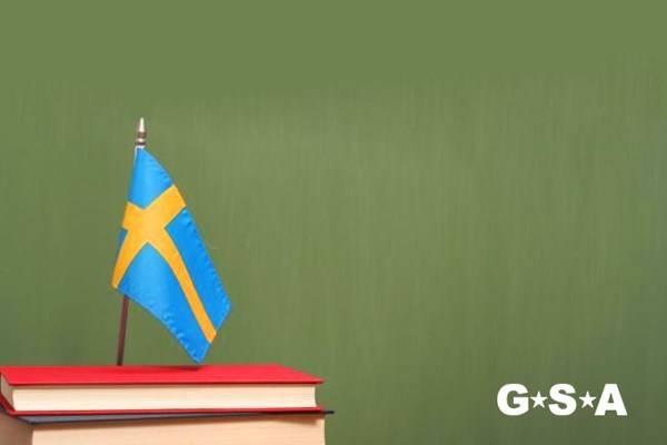 Университеты и бизнес-школы швеции: сравнение, подготовка, поступление, учебные визы. профессиональное зачисление.