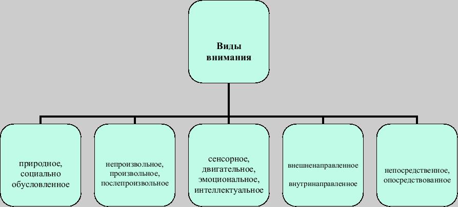 Виды и характеристики внимания в психологии
