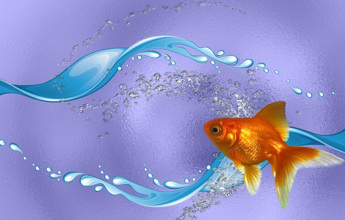 Чем условный рефлекс отличается от безусловного?
