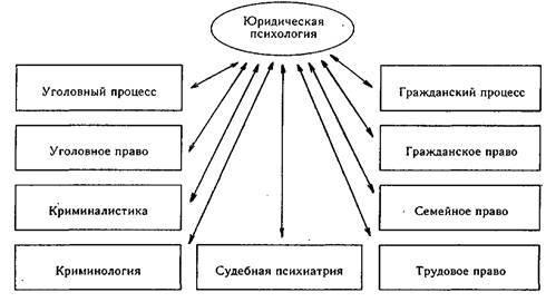 Определение судебная психология. что означает слово судебная психология?