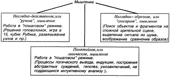 Свойства мышления: основные свойства мысли и правильного мышления в психологии, относится ли к свойствам целенаправленность?