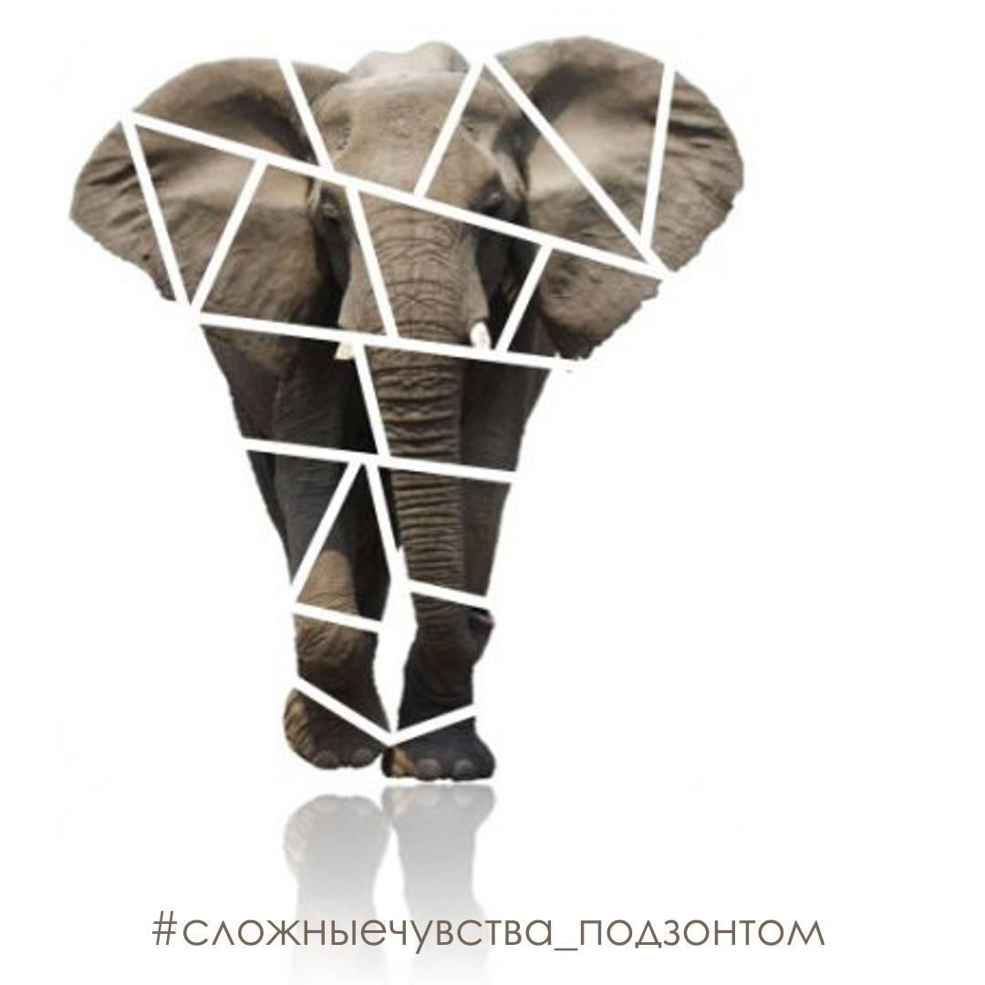 Как съесть слона, или сколько сеансов тетахилинг нужно для достижения результата