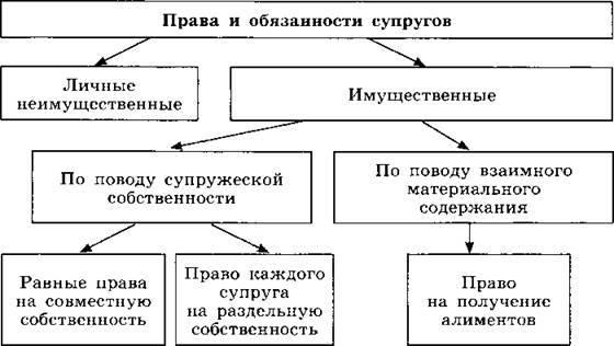 Основные понятия семейного права