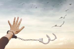 Психология: законы психологии - бесплатные статьи по психологии в доме солнца