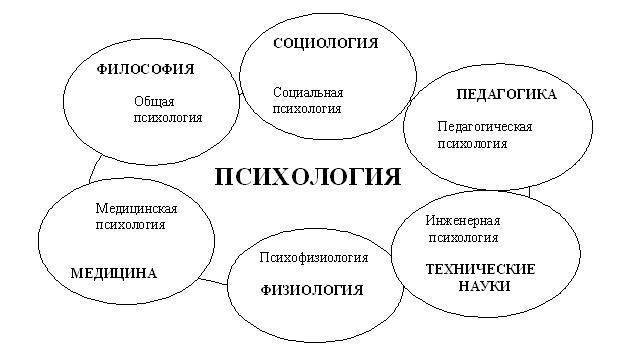 Психология как наука: понятие, предмет, задачи, этапы развития психологии