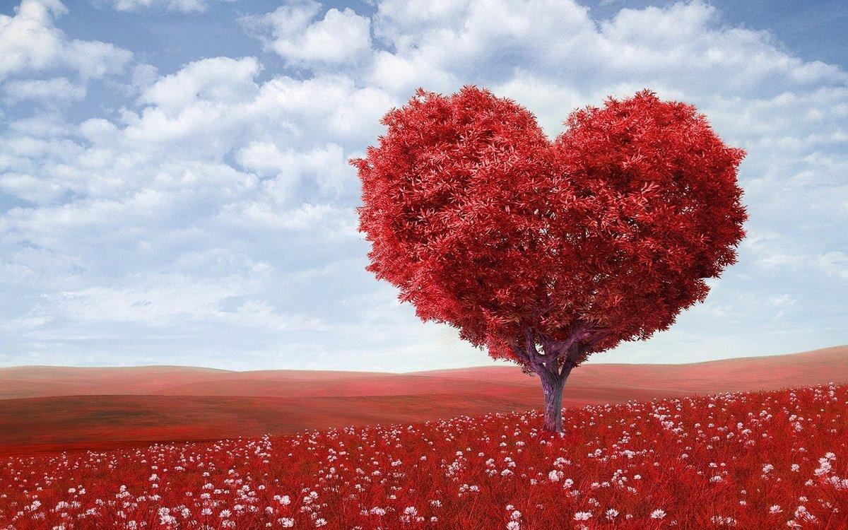 Настоящая любовь - какая она?