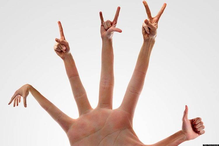 Язык жестов: как понять других?