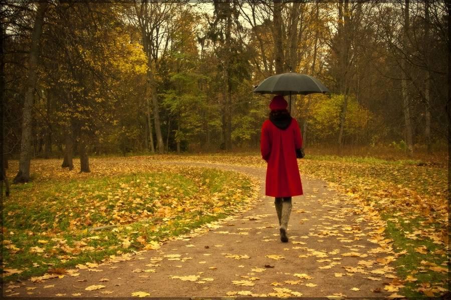 Одиночество как добровольный выбор