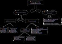 Генетическая эпистемология - genetic epistemology
