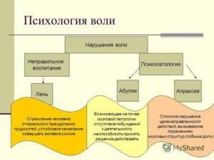 Определение силы воли у человека в психологии: понятие кратко, основные виды