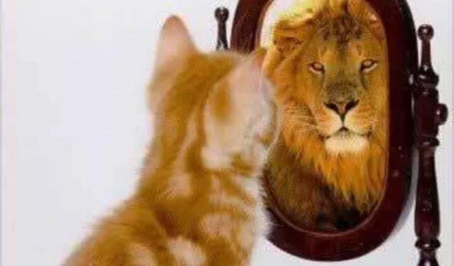 Способы саморегуляции эмоционального и психического состояния. релаксация, аутотренинг и самовнушение в психологии