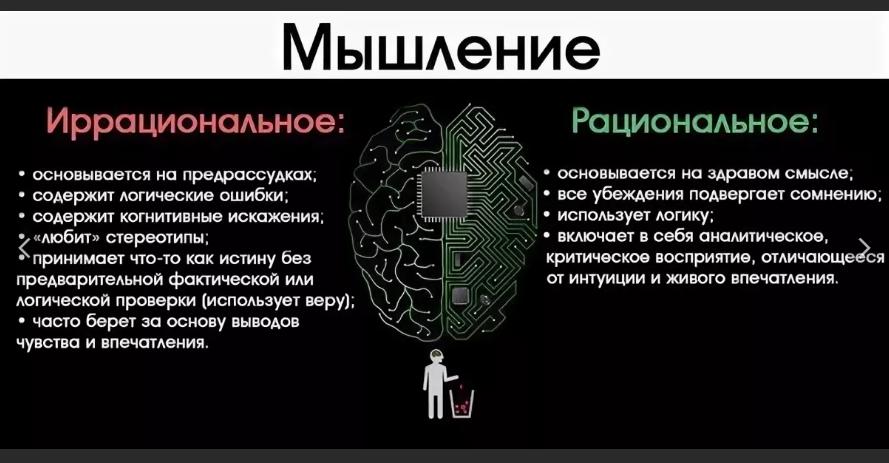 «мужское» и «женское» поведение