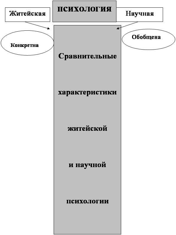 Научная и житейская психология (по гиппенрейтер) | учеба-легко.рф - крупнейший портал по учебе