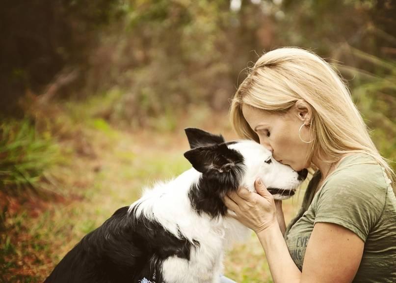 Как пережить смерть любимого домашнего животного