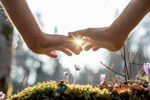 Любовь это забота внимание и уважение. почему любовь - это искренняя забота друг о друге?
