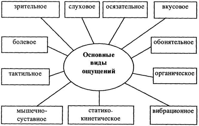 Виды ощущений в психологии: таблица