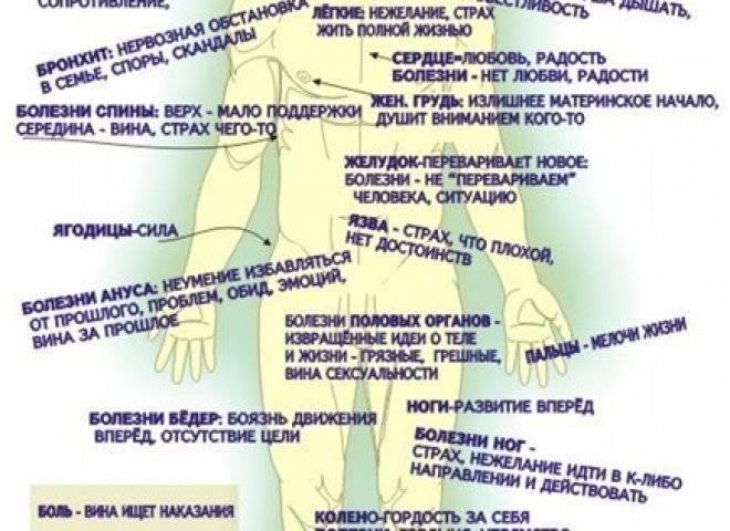 Паразиты в организме человека: как узнать, что они есть