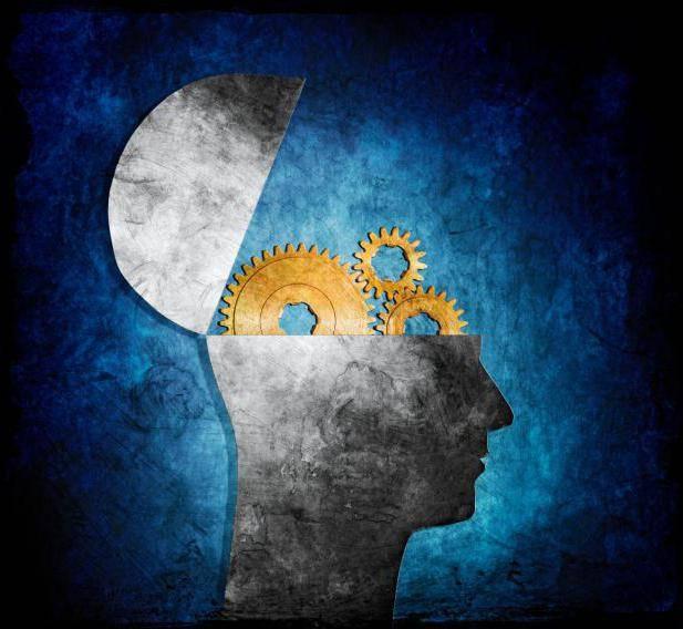 Что такое психология и какие ее основные принципы?