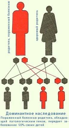 Визуальная диагностика особенностей личности: 8 доминант