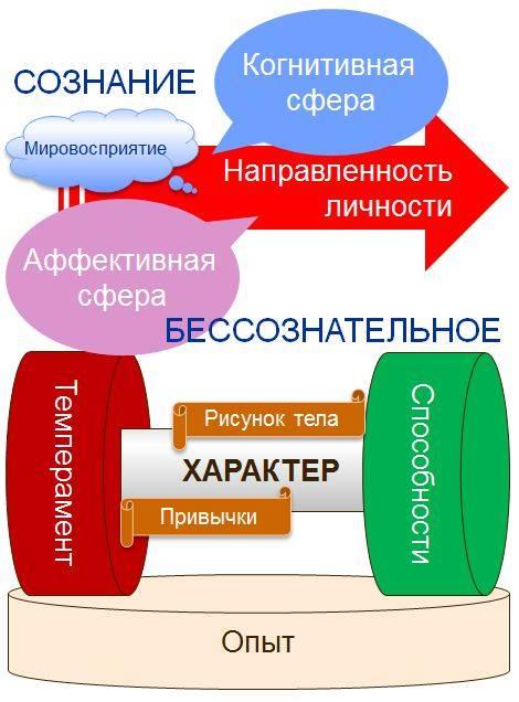 Личность: что это такое, структура и типы личности в психологии?