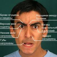 Психология: гнев - бесплатные статьи по психологии в доме солнца