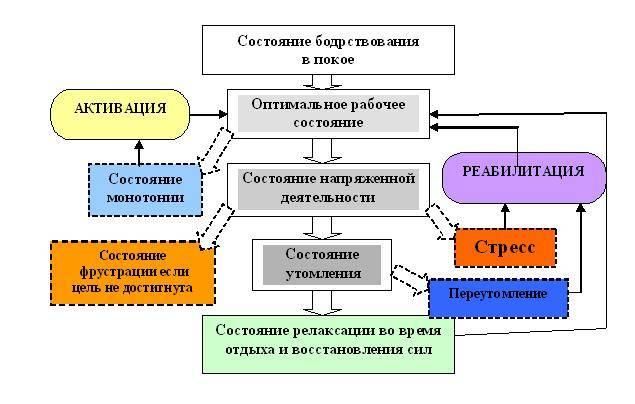 Функциональные состояния (психология) — википедия. что такое функциональные состояния (психология)