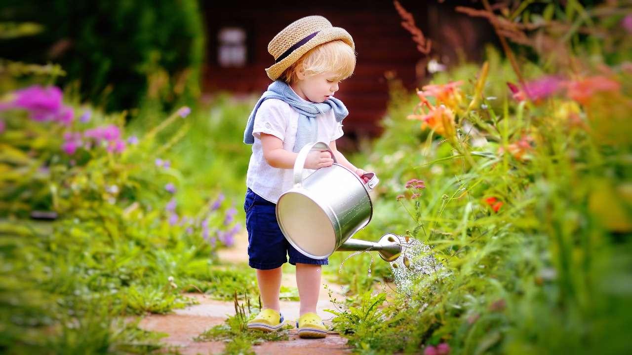 Психология воспитания: как научить ребенка жить