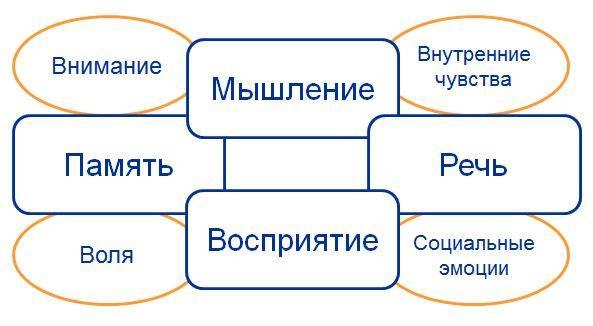 Высшие психические функции — википедия с видео // wiki 2