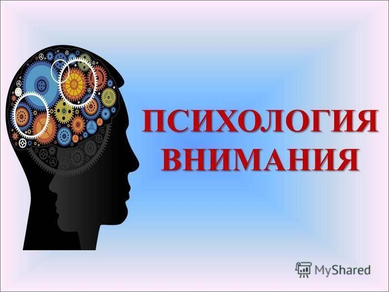 Психология: уровни внимания - бесплатные статьи по психологии в доме солнца