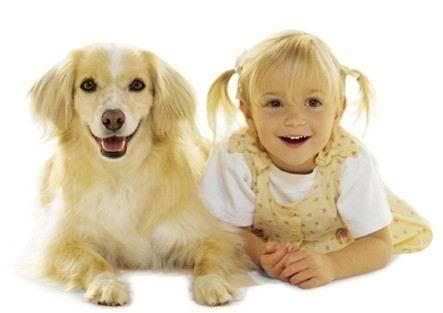 Методика положительного подкрепления. джон фишер. о чем думает ваша собака. психология собак