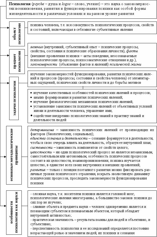 Апперцепция: определение и значение термина
