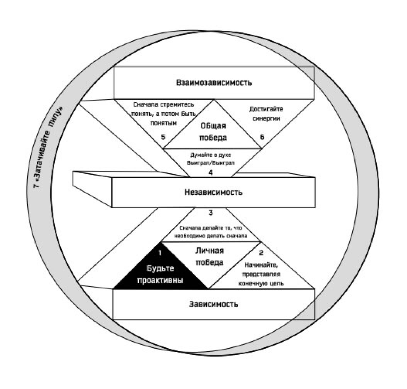 Проактивность — главное качество успешного человека. реактивная и проактивная модели поведения в бизнесе