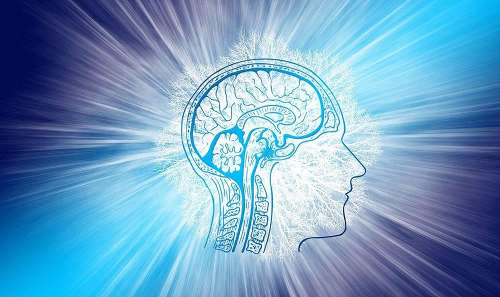 Виды и особенности тестов на определение интеллекта