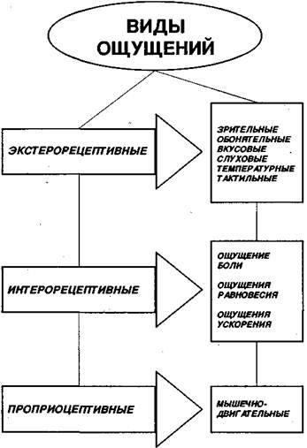 Психология и чувство стиля