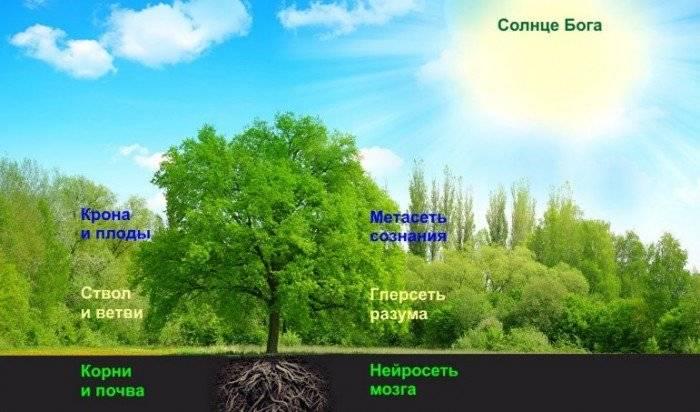 Психология: мировоззрение - бесплатные статьи по психологии в доме солнца