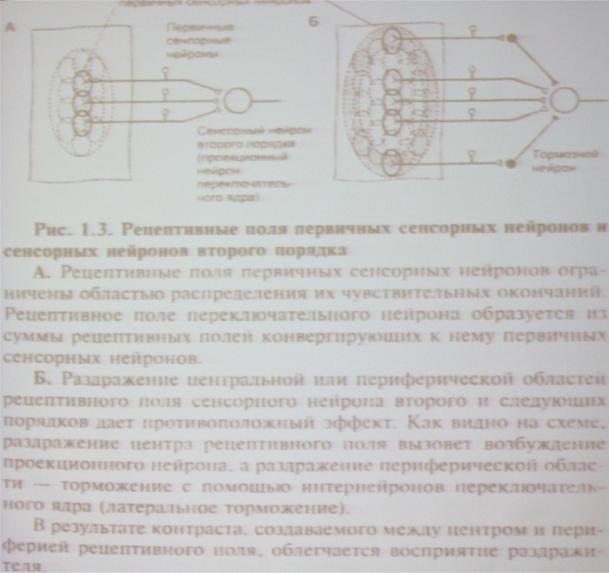 Средства влияния. влияние посредством стимулирования сенсорной системы объекта