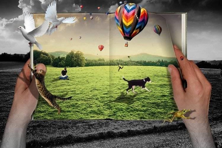 Воображение человека: развитие, виды, восприятие в психологии, процессы, формы, роль, особенности, функции, примеры